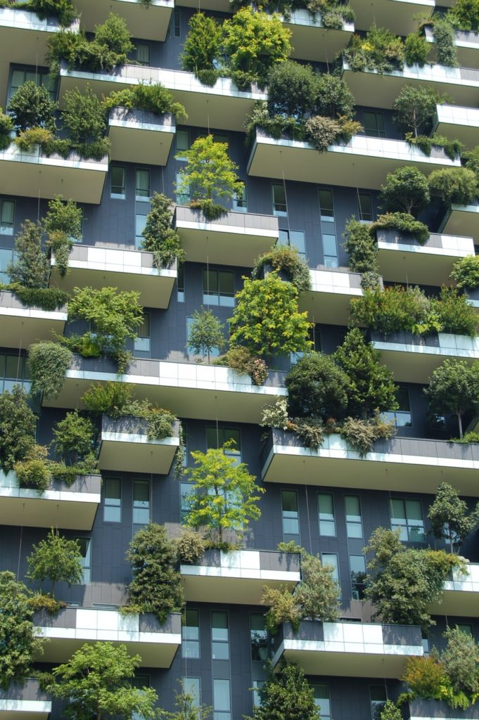 Building with trees on balconies