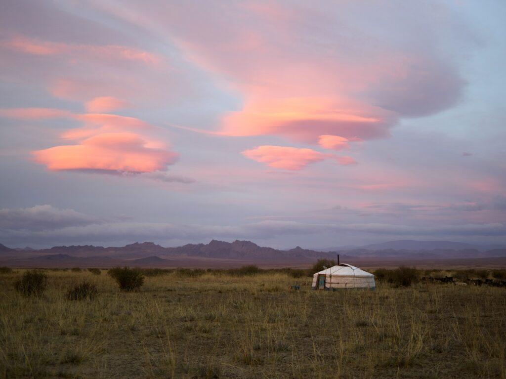 Yurt in a field